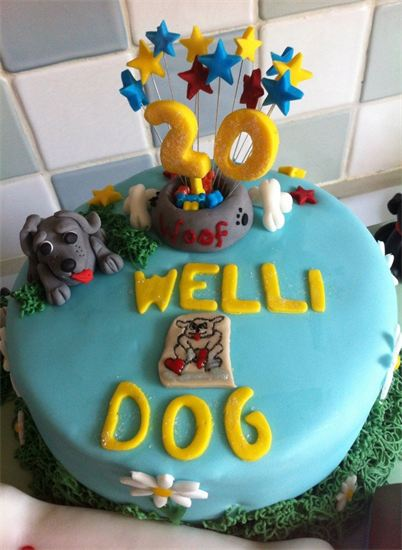 Celebrating 20 Years of Wellidog