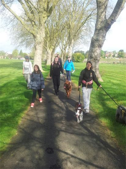 Waendel Walk for Wellidogs