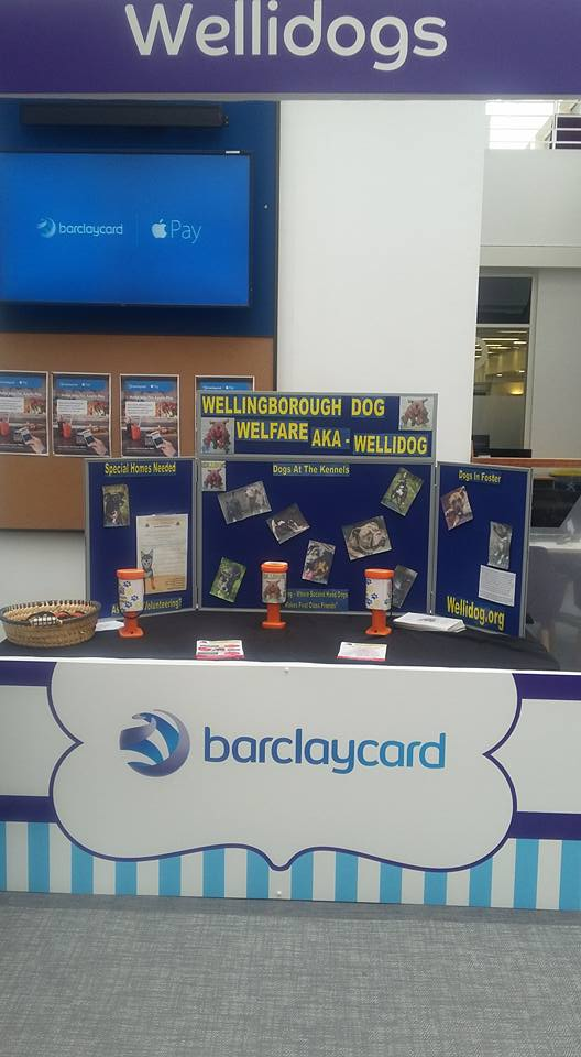 Our Very Own WELLIDOG Stand at Barclaycard