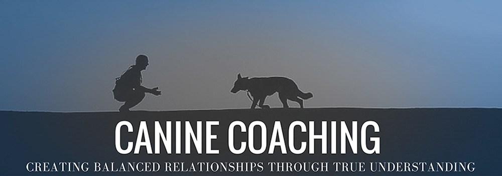 Canine Coaching – Wellingborough Dog Welfare (Wellidog)